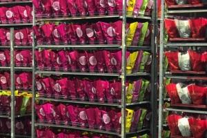 Расширение действующей оптово-розничной сети Цветочный Рай