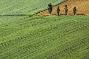 Инвестирование в перепродажу земли