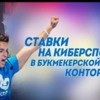 Николаенко Илья Алексеевич