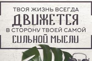 Развитие торговой сети в Московском регионе ( МО, Москва ).