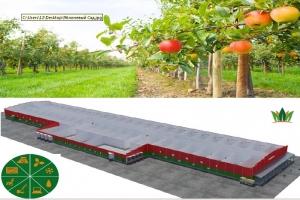 Хранение и Переработка фруктовой продукции!