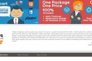 eCommerce программисты, компания