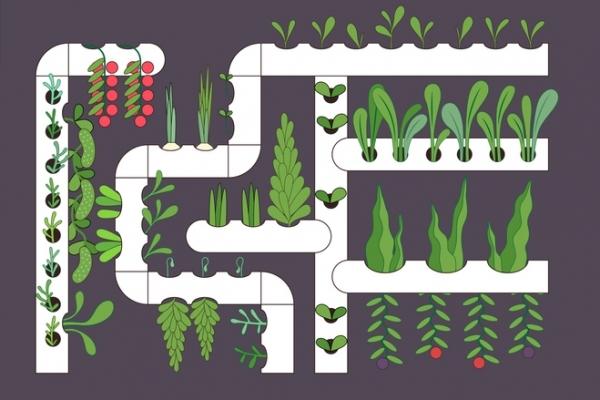 Производство вертикальных ферм для выращивания овощных культур