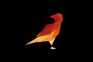 Кибер клуб White Crow